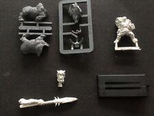 Games Workshop Warhammer AOS Savage Orc bonesplitterz sanglier Boy + lance lot A