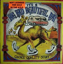 It's A Beautiful Day - It's A Big Bad Beautiful Day