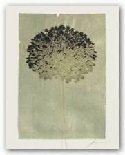 Silver Stern III James Burghardt Art Print 14x11