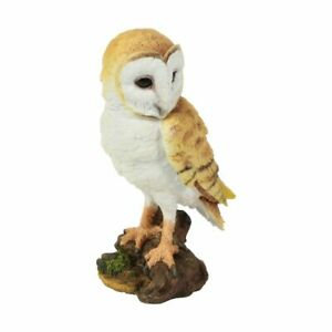 Resina Gufo Figurina Da Naturecraft 23cm x 13cm