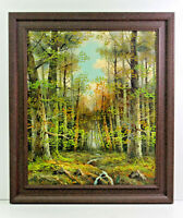 Country Forest Woods Landscape 20 x 24 Oil Painting on Canvas w/ Custom Frame