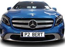 P28 ERT P2 BERT