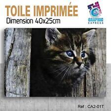 40x25cm - TOILE IMPRIMÉE- TABLEAU DECO POSTER -CHATS(CAT) - CA2-01T