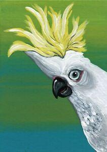 ACEO ATC Original Miniature Painting Cockatoo Parrot Bird Art -C.  Smale