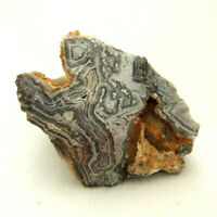 Mexican Crazy Lace Agate Unpolished A Grade Old Stock 178g 6.5cm Freestanding