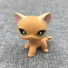 LPS #525 Animals Littlest Pet Shop Toys Orange Striped Cat Green Eyes Kitty Gift