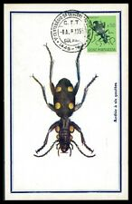 PORT. GUINEA MK 1955 INSEKTEN KÄFER BEETLE BUG CARTE MAXIMUM CARD MC CM h0624