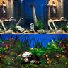 Superfish Poster 5 Ancient Ruins Plants Aquacape Aquarium Background Fish Tank