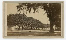 Civil War CDV Baton Rouge Soldiers Tents Beyond Trees McPherson & Oliver c1863