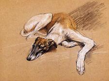 GREYHOUND CHARMING DOG GREETINGS NOTE CARD, BEAUTIFUL RESTING DOG