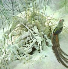 Lady Amherst Pheasant by Robert Bateman Limited Edition