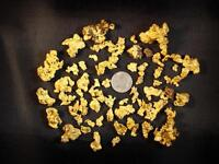 2-3lbs FREE GOLD Virginia Gold Paydirt Gimmick Free paydirt