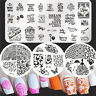 Born Pretty Nail Art Stamping Image Plates Flower Butterfly Templates Decor
