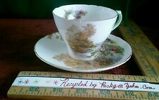 SHELLEY porcelain  Woodland pattern Tea Cup teacup and Saucer