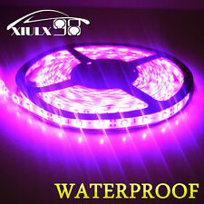5M 16.4ft Waterproof 3528 SMD 300 leds Pink Flexible Strip decoration Lights US