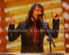 LAWRENCE GOWAN PHOTO STYX 8X10 CONCERT PHOTO by Marty Temme 1A
