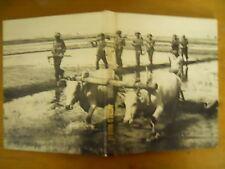 Time Life, H/C, World War 2, China, Burma, India