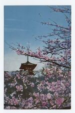Old Yokohama: Sankeien Garden JAPAN OLD POSTCARD Cherry Blossoms