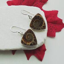 Ammonit FOSSIL MARRONI BEIGE RETTANGOLARE Design Orecchini Orecchini 925 Sterling Argento