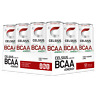 Celsius BCAA +Energy Carbonated (355ml) 12 Cans - BCAA + ENERGY DRINK