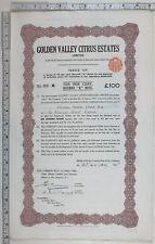 1925 Antique Share Certificat Doré Valley Agrumes Estates Limitée
