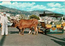 Carte postale ancienne PORTUGAL MADEIRA FUNCHAL carro de bois écrite 1972