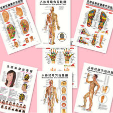7pcs English Acupuncture Meridian Acupressure Points Posters Chart Wall Map GN