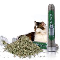 One Bottle Cat Toys Catnip 40ml Pure Natural Loose Pet Kitten Mint Cat Supplies