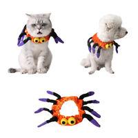 Dog Cat Pet Collar Adjustable Halloween Party Spider One Size Decor Warm Winter