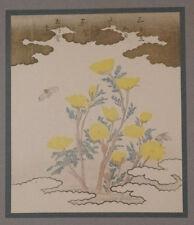 SURIMONO ' FLIES ON ADONIS SIBIRICA ' OLD ART PRINT OF A JAPANESE WOODBLOCK