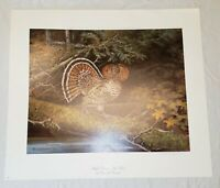 1986 Owen J Gromme Ruffed Grouse Red Phase Limited Edition Print #166/850