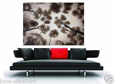 "47"" x 32"" Large original Art Painting  Landscape Australia Oil Canvas Tree"