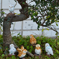Mini Owls Miniature House Fairy Garden Micro Landscape Garden Decor wr