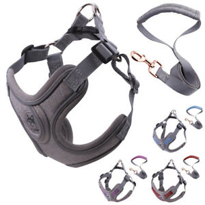 Dog Puppy Harness Leash Set Breathable Mesh Vest for Small Pets Outdoor Walking