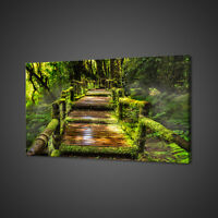 BRIDGE IN THE GREEN RAINFOREST BOX MOUNTED CANVAS PRINT WALL ART PICTURE PHOTO