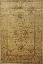 Traditional Persian Oriental Area Rugs