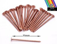 50 x 75mm Copper Nails Extra Large Tree Stump Killer Tree Removal Gardening Home
