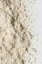 Astragalus Herb Pure Natural Powder - 1KG