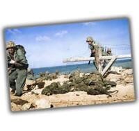 "World War Photos Japanese in pillboxes on Tarawa WW2 Glossy Size ""4 x 6"" inch W"