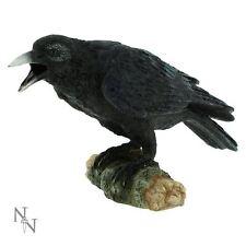 Nemesis ahora Raven Negro ave llamada canción Estatuilla Prop Fiesta Halloween Decoración