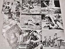 TARZAN le magnifique ! Gordon Scott  jeu 9 photos cinema lobby card 1961