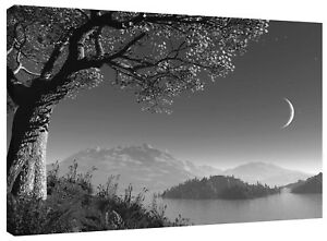 Moon Lake Landscape Canvas Wall Art Picture Black and White Print also in Colour