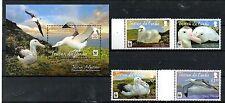 TRISTAN da CUNHA,  2013,WWF  BIRDS-ALBATROSS,4v.+M/S,  MNH