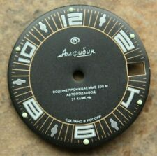 Dial To Vostok Amphibian Watch NEW 394