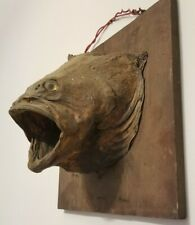 Antique Largemouth Bass Taxidermy Fish Head Mount Man Cave Scary Halloween