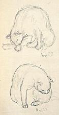 Dorothy Eaton Drawing (XXVI) Cats