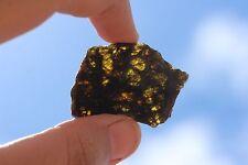 NWA 7831 Diogenite Meteorite 6.6 gram full slice!