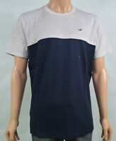 Hollister Mens Must Have Crew Neck T-Shirt Tee Heather Grey and Navy XL RRP £15