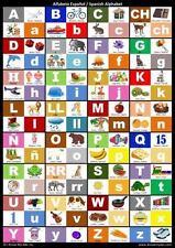 Spanish Alphabet Chart : Spanish Alphabet Poster by Harshish Patel