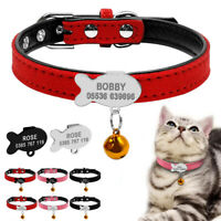 Personalised Suede Cat Collars & Fish Tag Leather Padded for Pet Puppy Dog XXS-S